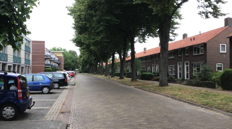 Heerenveen Lokaal bomen hiddingastraat